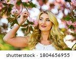 Spring Blossoming Tree. Spring...