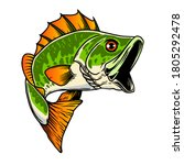 illustration of bass fish. big... | Shutterstock . vector #1805292478