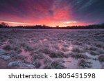 Morning Hoarfrost On A Field...