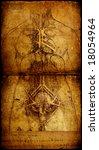 Photo Of The Vitruvian Man By...