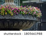 Fountain With Flowers And Wate...