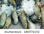 fresh shrimp on ice | Shutterstock . vector #180576152