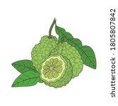 Bergamot  Kaffir Lime Citrus...
