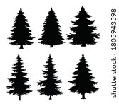 isolated pine on the white... | Shutterstock .eps vector #1805943598