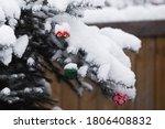 Forest Snowy Chrismas Tree Wit...