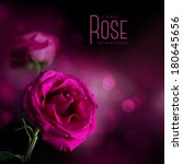 pink rose against a soft dark... | Shutterstock . vector #180645656
