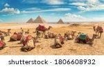 Camels In Sandy Desert Near...