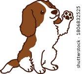 outlined brown cavalier king... | Shutterstock .eps vector #1806832525