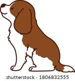 outlined brown cavalier king... | Shutterstock .eps vector #1806832555