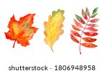 Set With Autumn Leaves....