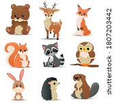 Set Of Cute Forest Animals....