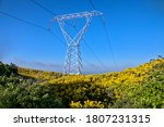 Power Line Captured Against The ...