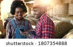 Small photo of African American young happy man farmer showing something to woman on smartphone. Couple of farmers at hay stocks talking using on mobile phone. Countryside concept. Tapping and scrolling on cellphone