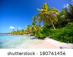 Caribbean Sand Beach With Palm...