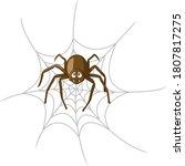 Cartoon Spider In Cobweb...