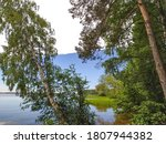 beautiful lake view with reeds...   Shutterstock . vector #1807944382