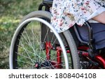 Young Woman In A Wheelchair In...