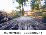 Old Wooden Floor And Forest In...