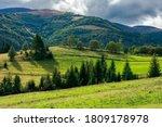 Rural Fields On Rolling Hills...
