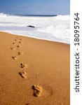 human footprints leading away... | Shutterstock . vector #18095764
