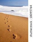 human footprints leading away... | Shutterstock . vector #18095764