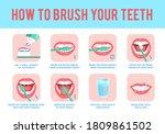how to brush teeth. correct...   Shutterstock .eps vector #1809861502
