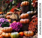 Pumpkins  Decor For The...