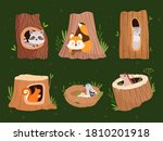 animals hollow. wood forest... | Shutterstock .eps vector #1810201918