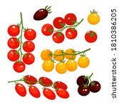 vector colorful set of tomatoes ... | Shutterstock .eps vector #1810386205