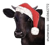 Cute Christmas Cow Portrait....