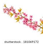 ice lemon straws in nature... | Shutterstock . vector #181069172