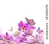 floral background of tropical... | Shutterstock . vector #181083296