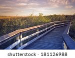 Deck In Everglades National...