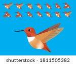 animal animation sequence bird...   Shutterstock .eps vector #1811505382