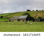 Old Stone Barn With Tin Roof...