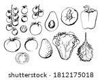 sketch of food vegetables by... | Shutterstock .eps vector #1812175018
