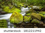 Mossy Rocks In A Forest River