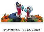 Healthy Thanksgiving banner as a seasonal sign with a turkey tom or gobbler and a hen and  each wearing a face mask and surgical facial protection for disease protection with 3D illustration elements.