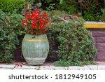 Arrangement In The Garden Of...