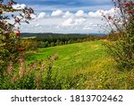 Landscapes Of Altenberg With...
