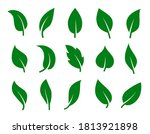 set of green leaves. collection ... | Shutterstock .eps vector #1813921898