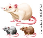vector illustration of three lab rats on white background - stock vector
