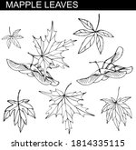 different maple leaves isolated ... | Shutterstock .eps vector #1814335115