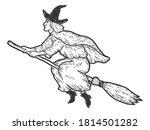 Halloween  Witch Flies On...