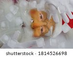 Santa Claus Frozen In Ice....