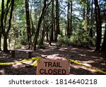 Sign Posted In Muir Woods...