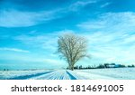 snowy winter forest road... | Shutterstock . vector #1814691005