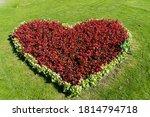 Heart Shaped Flower Bed In...