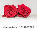 Bunch Of Red Roses With Water...
