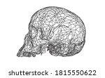 wireframe skull human  scary ... | Shutterstock .eps vector #1815550622